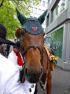 2014 Sechseläuten Pferde-Kopfschmuck