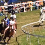 Rennen jugendlicher Jurassier ungesattelt zu Pferd